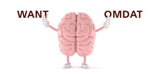 brein-want-omdat