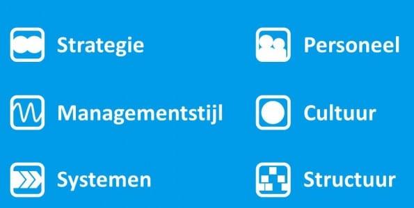 Organisatie-model