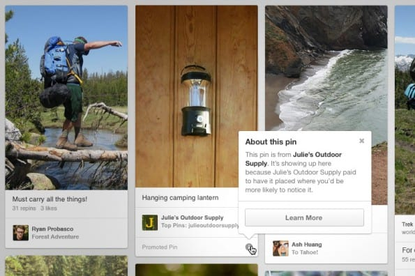 Pinterest-in-2013-promoted-pins