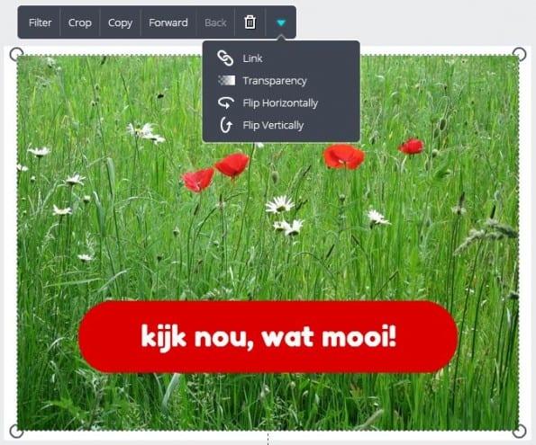 In Canva voeg je snel een tekstblok aan een foto toe