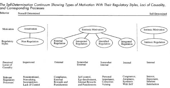 The Self-Determination Continuum