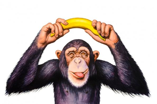 Chimpansee en banaan