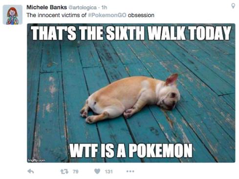 Ouderen hebben een hond, jongeren Pokémon Go en sommige hebben ze allebei