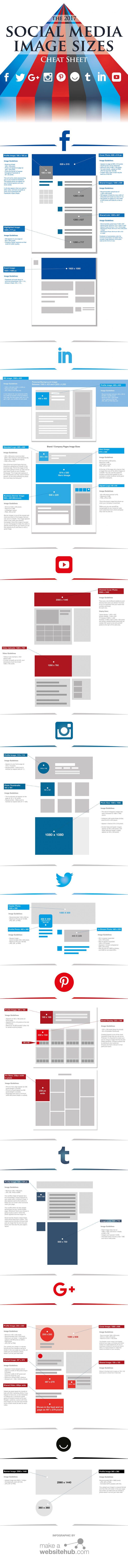 social media infographic formaten
