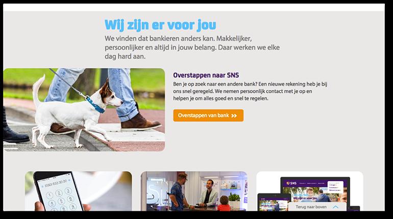 Online pre-suasion op sns.nl