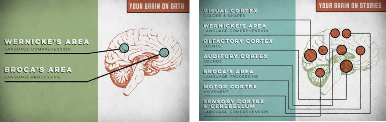 storytelling hersenen