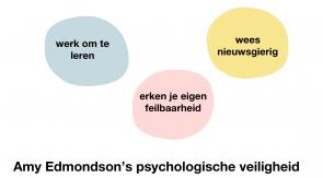 Amy Edmondson's psychologische veiligheid