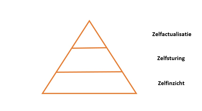 Purpose alignment pyramide zelfactualisatie de impact van innovatie de impact van technologie