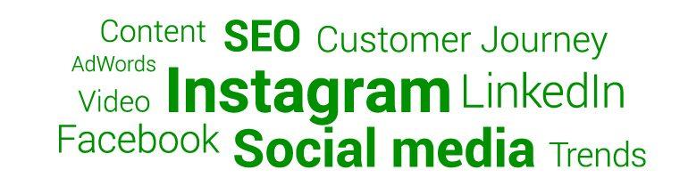 Zoektermen: Instagram, Facebook, Social media, LinkedIn, Customer Journey, Trends, Content, Video, AdWords