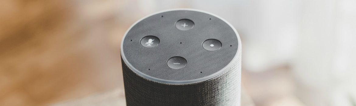 voice smart speaker
