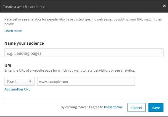website audiences