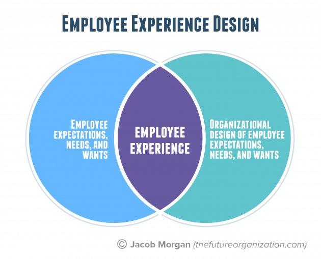 Venn-diagram met op het snijvlak van medewerkerbehoeften en organisatieontwerp het zogenaamde employee experience design'