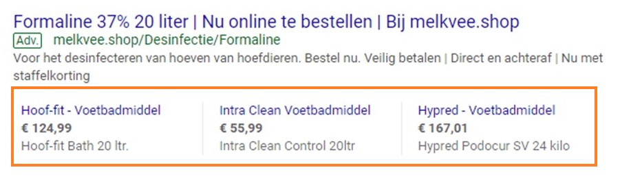 Advertentie in Google Ads.
