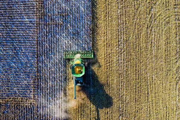 Machine oogst van het land.