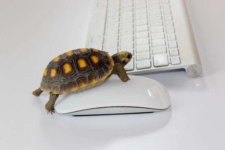 Wordpress langzaam