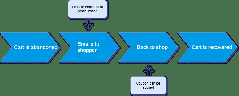 Screenshot van Abandoned Cart Email.