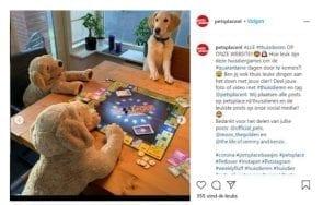 Instagrampost voor de user generated content-campagne van Pets Place