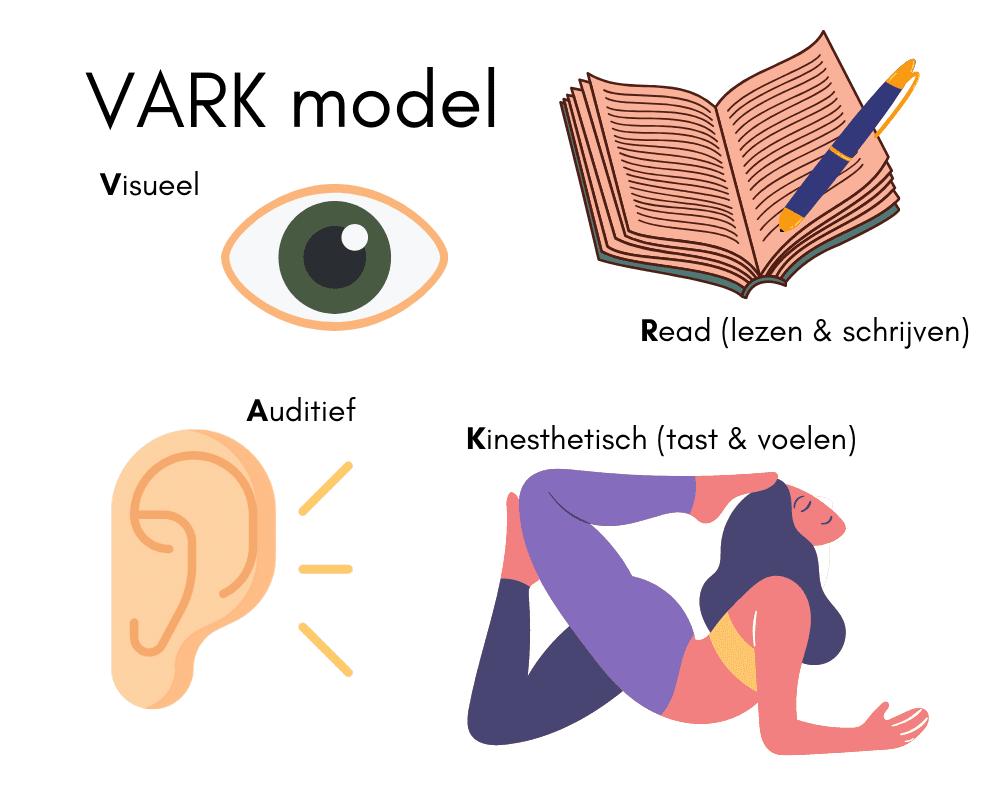 Visuele weergave VARK model