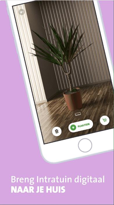 L'application intratuin s'est ouverte sur un téléphone dans lequel quelqu'un place une plante dans une pièce au moyen de la réalité augmentée.