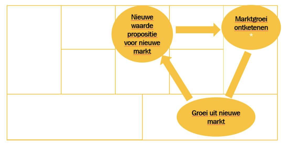De groeistrategie van de Visionairs in een schema.