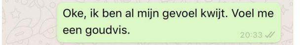 Screenshot van een WhatsApp-tekst over dat ze zich een goudvis voelt.