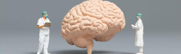 Foto de un cerebro con dos médicos.